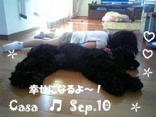 casa-092110.jpg