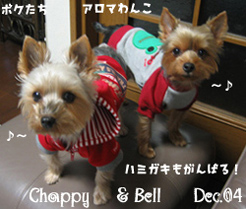 chappy-bell-shampoo.jpg