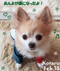 kotaro-022218-2.jpg