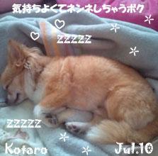 kotaro-071410.jpg
