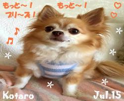 kotaro-071515-2.jpg