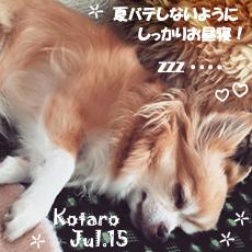 kotaro-080215.jpg