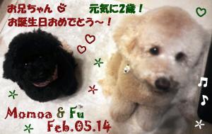 fu-momoa-020514.jpg