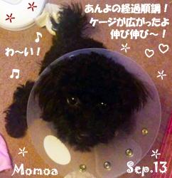 momoa-090813.jpg