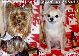 kiki-mue-eyewash.jpg