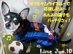 lime-070410.jpg