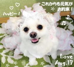 love-080417-1.jpg