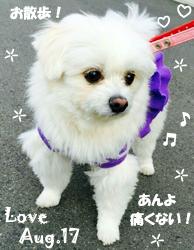 love-080417-2.jpg
