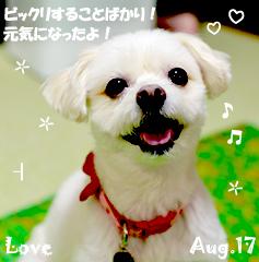 love-080417-3.jpg