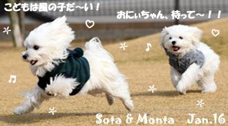 sota_monta-011816.jpg