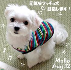 moko-080512.jpg