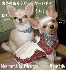 narumi-momo-eyewash.jpg