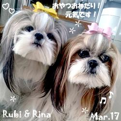 rina_rubi-032017.jpg