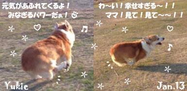 yukie-011413.jpg