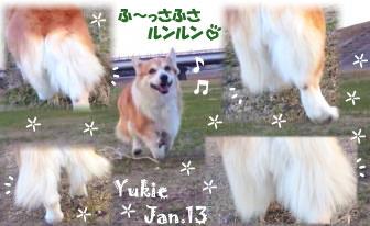 yukie-012013.jpg