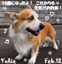 yukie-022112-1.jpg