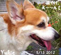 yukie-051312.jpg