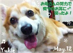 yukie-051412.jpg