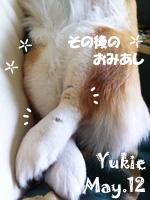 yukie-052212.jpg