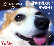 yukie-061712.jpg