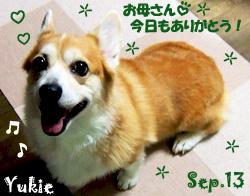 yukie-090513-1.jpg