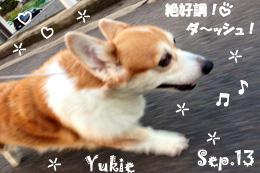yukie-090513-2.jpg