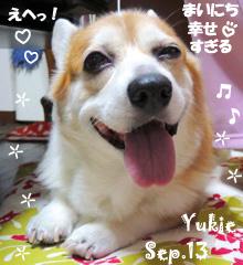 yukie-092013-2.jpg