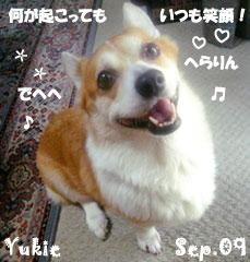 yukie-092409-1.jpg