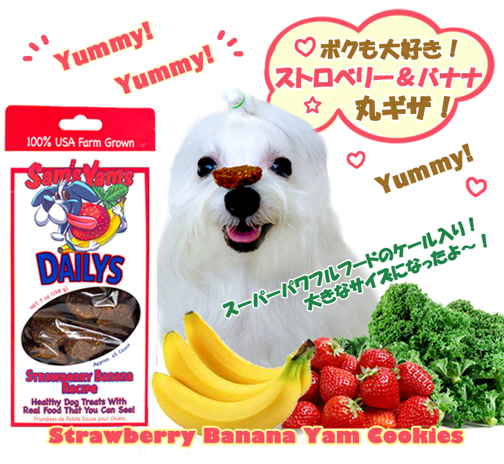 coco-yamcookie_strawberry_banana_kale-New.jpg
