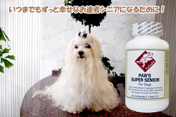 元気なシニアになるために全年齢のわんこのバランス栄養素 Paw's スーパーシニア   (60 錠)