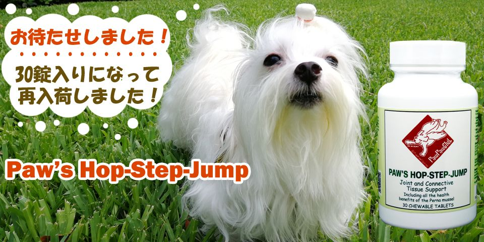 Hop-Step-Jumpが入荷しました!