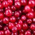 cranberry-70.jpg